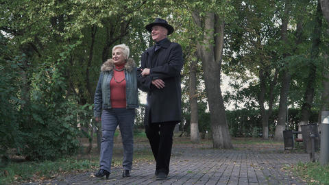 Old couple admire nature in the park Footage