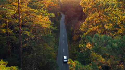 Aerial view on car driving through autumn forest road. Scenic autumn landscape Footage