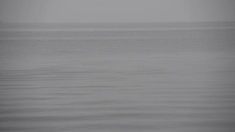 Calm grey ocean background with horizon Footage