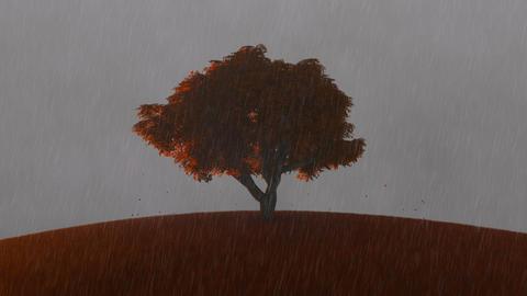 Single autumn tree on a meadow with rain Animation