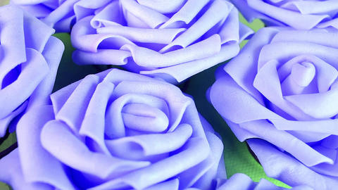 Purple roses rose texture pattern Live Action