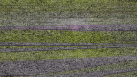 Abstract Background Horizontal Distorted Abstract Lines 2