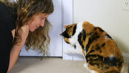 Slow motion of young woman, calico cat raising paw, wanting, opeing door Footage