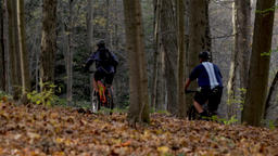 Mountain biking in the forest during the autumn season. Pack of cyclists riding Footage