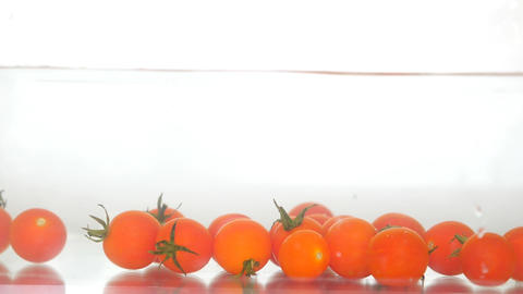 Red Fresh Organic Tomatoes Zoo Animation