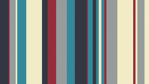 Multicolor Stripes 18 - Elegant MultiStripes Video Background Loop Animation