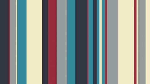 Multicolor Stripes 18 - 4k Elegant MultiStripes Video Background Loop Animation