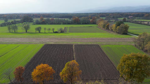Aerial view of east Slovenia countryside with fields, forest and hedges 영상물