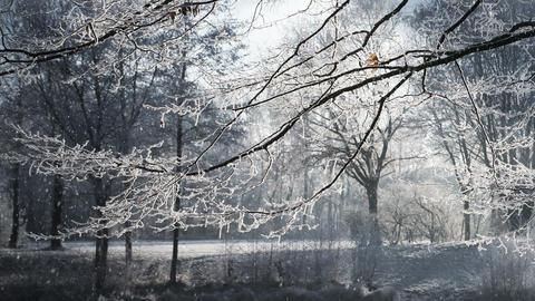 Wintertime 0