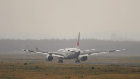 Japan Airlines Dreamliner Boeing 787 braking Live Action