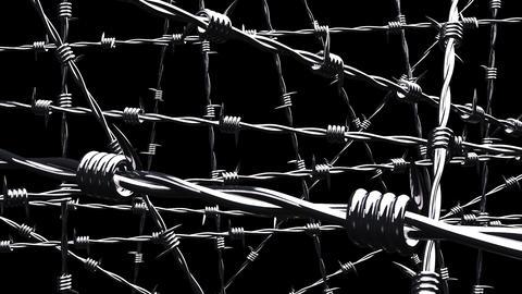 Barbwire on black background Animation