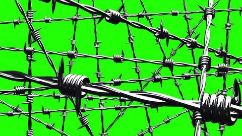 Barbwire on green chroma key Animation