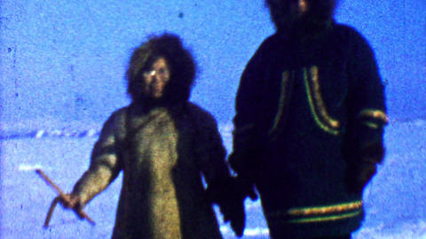 1957: Native Inuit couple braving cold weather checking animal traps Footage