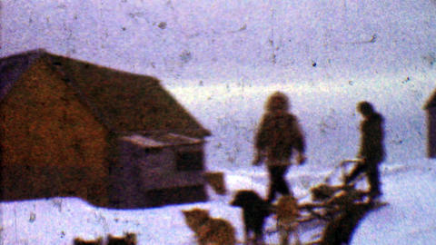 1957: Eager sled dogs ready winter snowscape cloudy journey ahead Footage