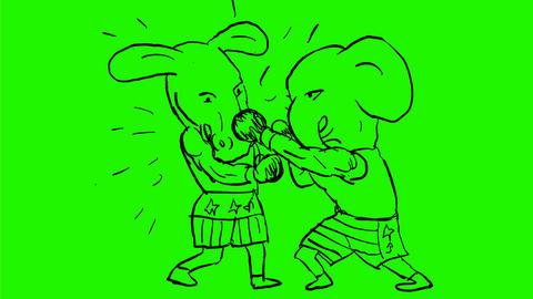Donkey and Elephant Boxers Drawing 2D Animation Animation