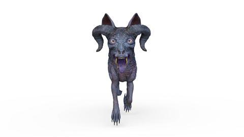 DOG Walk Animation