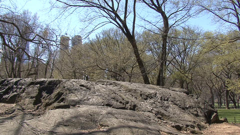 A great boulder in New York's Central Park Footage