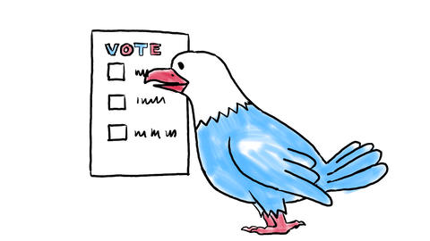American Election With Eagle Voting Drawing 2D Animation Animation