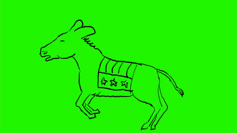 Donkey With American Flag Bucking Drawing 2D Animation Animation