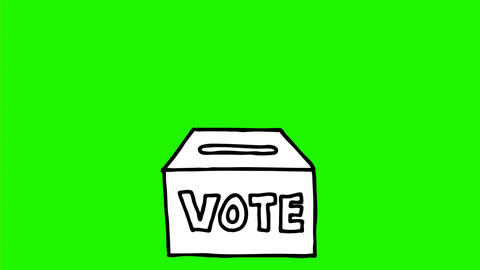 Ballot Vote Paper Voting Box Drawing 2D Animation Animation