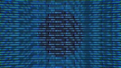 Binary code screen data code.Web network Animation 4k background Animation