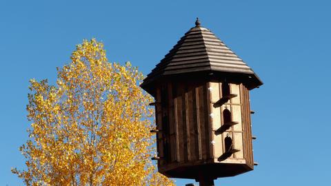 The wooden dovecote on the background of the blue sky. A large pigeon loft or 영상물
