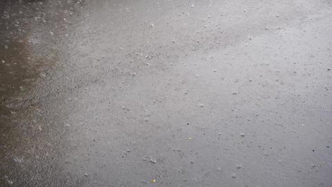 Rain on asphalt Footage