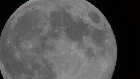 中秋の名月 ビデオ