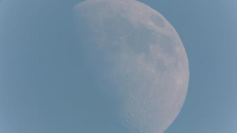 昼間の月 ビデオ