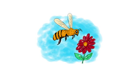 Honeybee Hovering Flower Drawing 2D Animation Animation