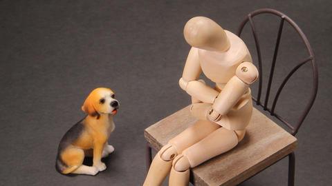 木の人形と犬の置物 ビデオ