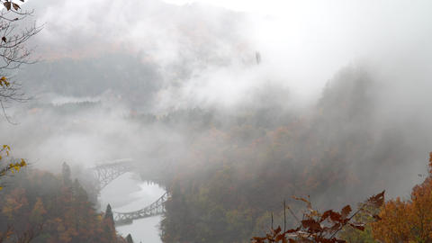 Autumn leaves with Japanese superb view Footage