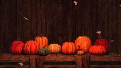 Thanksgiving autumn pumpkins festive 3D background Animation