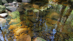 Pure, clear water in a mountain brook. Nature Footage