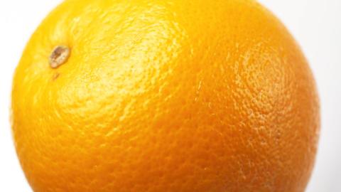 Orange macro Animation