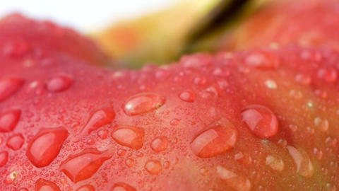 Red apple with dew Stock Video Footage