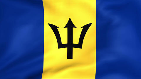 Flag Of Barbados Stock Video Footage