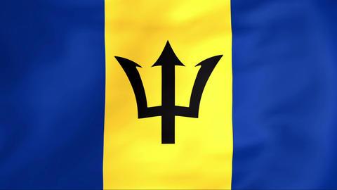 Flag Of Barbados Animation