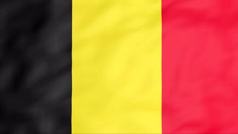 Flag Of Belgium Stock Video Footage