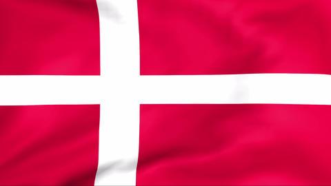Flag Of Danmark Stock Video Footage
