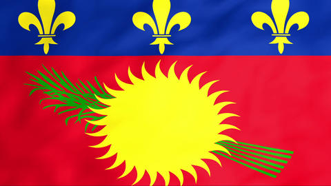 Flag Of Guadeloupe Stock Video Footage