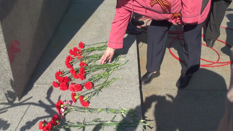 Red carnations on the granite Stock Video Footage