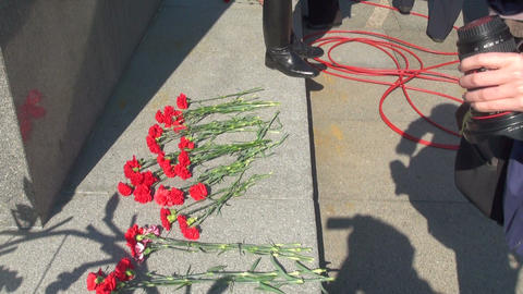 Red carnations on the granite Footage