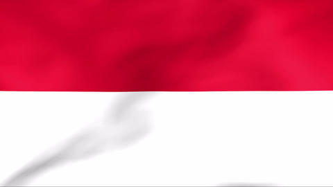 Flag Of Indonesia Stock Video Footage