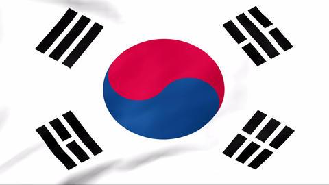 Flag Of Korea Stock Video Footage