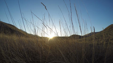 sun goes down at horizon View thru the tall dry grass Time lapse Footage