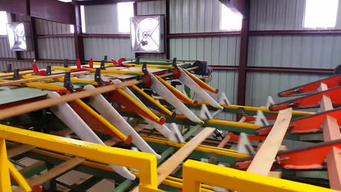 Sorting Of Boards And Beams On The Conveyor Belt Of A Sawmill5 Live Action