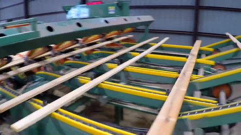 Sorting Of Boards And Beams On The Conveyor Belt Of A Sawmill Live Action