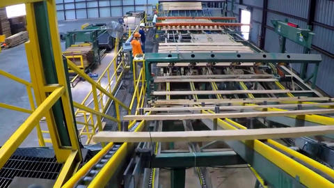 Sorting Of Boards And Beams On The Conveyor Belt Of A Sawmill4 Live Action