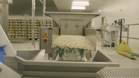 Ishida High Speed Weighing and Packing System for Fruit Snacks Live Action